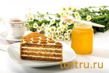 """Торт """"Сметанин медовый"""", Mirel"""