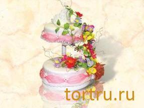 """Торт """"Жозефина"""", Хлебокомбинат Кристалл"""